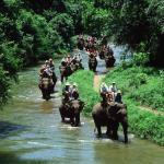 01-bali-elephant-ride-tour