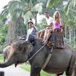 03-bali-elephant-ride-tour