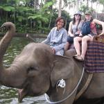 04-bali-elephant-ride-tour