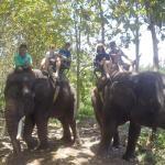 05-bali-elephant-ride-tour
