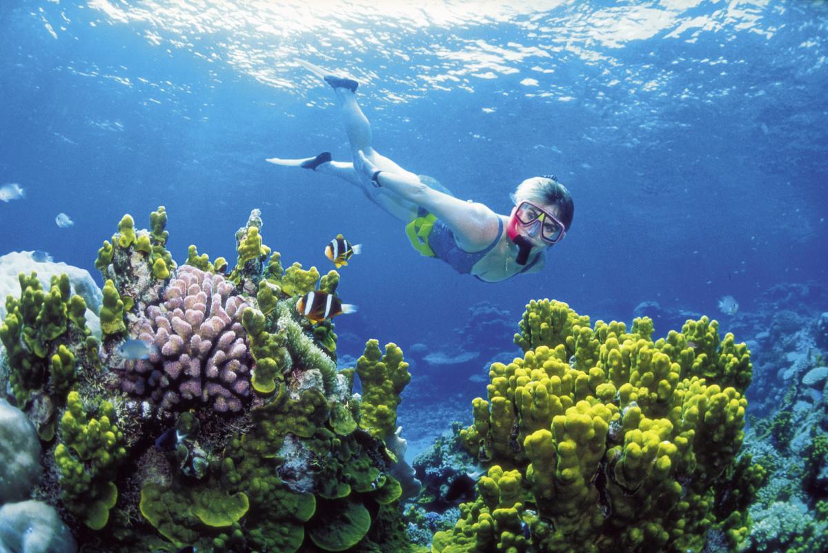 Bali Hai Reef Cruise - Lembongan Island Cruise 15% Off