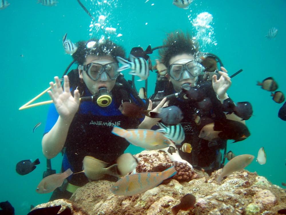 Nusa Dua Snorkeling Tour