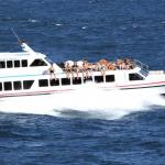 fast-boat-gili-semaya-one-boat-in-the-sea