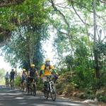 06-bali-cycling-ride-on-road
