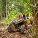 08-bali-buggy-utv-bamboo-forest