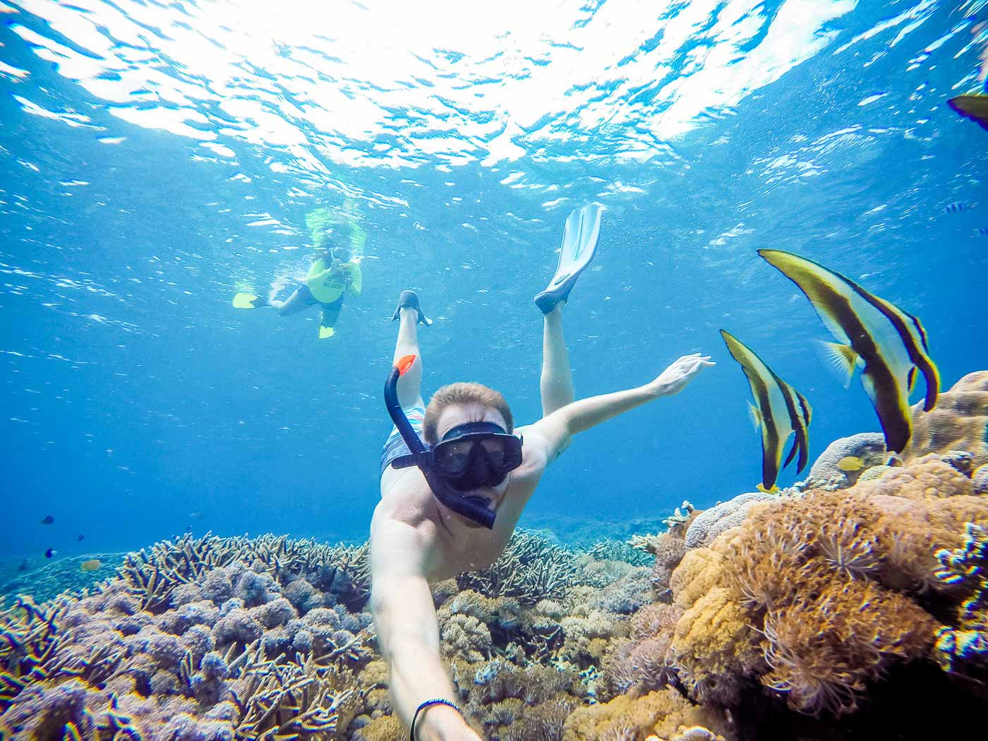 4 Snorkeling Points 25% Off
