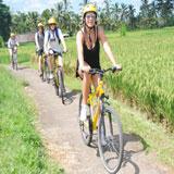 Alam Bali Cycling